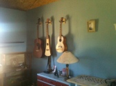 bedroom and guitar worship in New Mexico