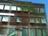 Building on Detroit Ave