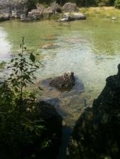 fun clear water of Lake Huron
