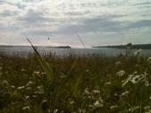 Marquette island times