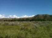 Theodore Roosevelt Grasslands