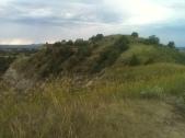Grassland View