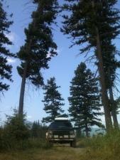 Jeep near Flathead River