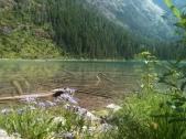 Flora and Lake