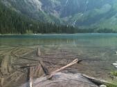 Log World Beneath the Water