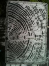 Nice Wood Pattern