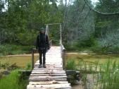 Fauna on Little Beaver Creek