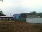 planting seeds mural