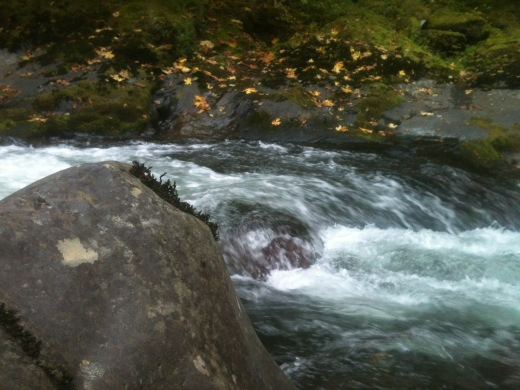 Rock in Midstream