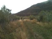 Cottonwood Canyon Hike