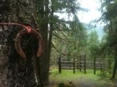Riley Horse Camp