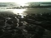 Bob's Tide Pools