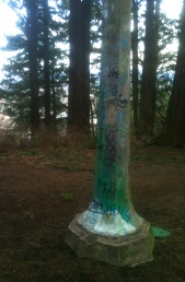 Mt. Hood Graffiti Post