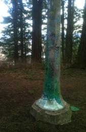 Mt. Hood Graffiti Post