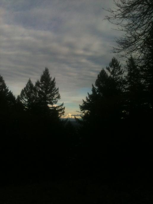 Mt. Hood Tucked Away