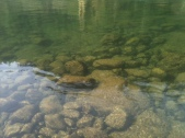 Depths of Clackamas River