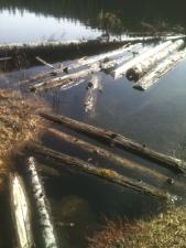 Herringbone Rafts