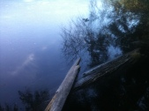 Hideaway Lake's Wintry Side