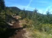 Trail 700 to Shell Rock Lake