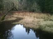 Oak Grove Fork