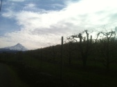 Fruit Loop Mountain