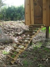 Chicken House Ladder