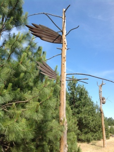 Winged Wood Sculpture