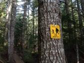Sasquatch Country