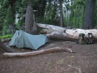 Cute Camp