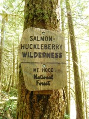 The Friendliest Forest I Know