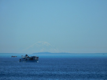 Mount Rainier and Whale Watching Boat