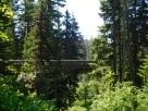 Brdige to Mt Hood Meadows Ski area