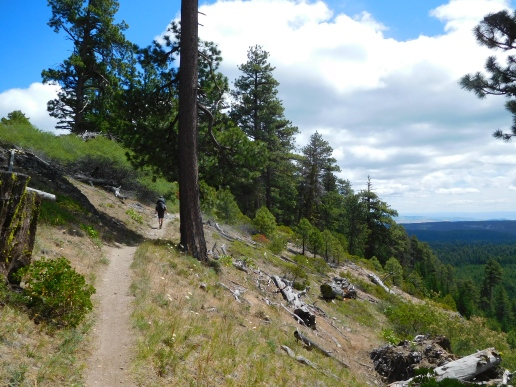8 Mile Creek trail