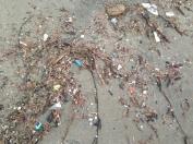 Human Plastic Throw-away Party