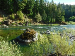 Clackamas River at Alder Flat