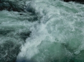 Whitewater on the Clackamas River