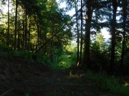 Secret Mountain Dispersed Camp
