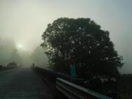 Nehalem River Bridge