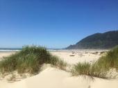 Manzanita Dunes
